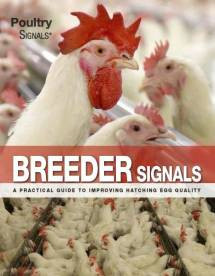 Breeder Signals - A practical guide to improving hatching egg quality