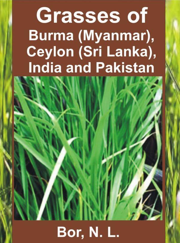 Grasses of Burma (Myanmar), Ceylon (Sri Lanka), India and Pakistan (Excluding Bambuseae)